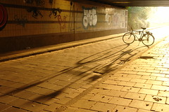 Evening bicycle (CharlesFred) Tags: autumn holland fall netherlands dutch amsterdam licht herfst nederland autunno paysbas fiets noordholland amsterdamoost zonnig autumne bicycleamserdam autumninamsetrdam