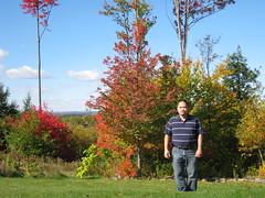 Maine Leaves