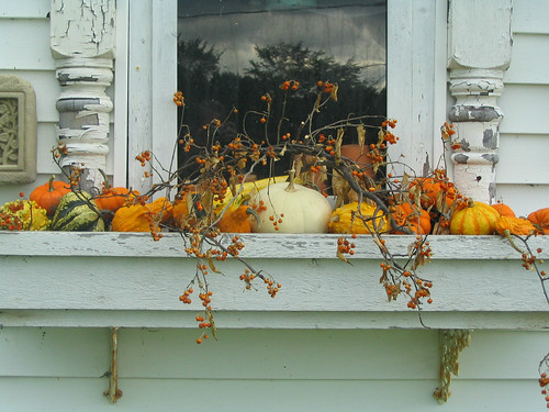 Fall ified window boxes newlywoodwards - Window decorations for fall ...