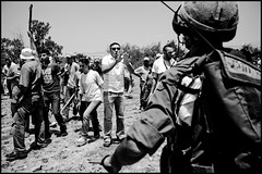 protest_riot_palestine_israel_west_bank_ni'ilin_arab_jewish_conflict_war_zoriah_08_08_08_G6Y7483 (Zoriah) Tags: rock war palestine westbank iraq protest documentary sling baghdad violence conflict shooting isreal idf photojournalist teargas palestinian warphotographer borderpolice inharmsway defenceforce iwh warphotography niilin zoriah zoriahmiller