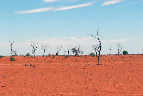 australie_0156