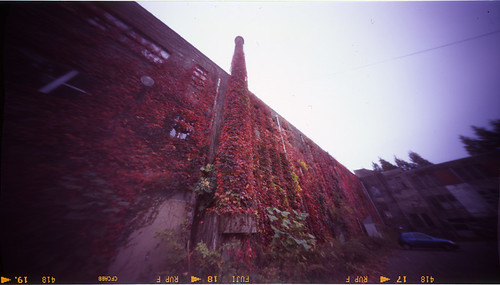 2008_1109_ブローニ07_東北大片平キャンパス