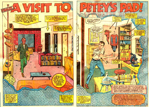 """A Visit to Petey's Pad"" from Amazing Spider-Man Annual #4"