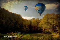 """""""En el aire. Estoy volando."""" (Nicolas Moulin (Nimou)) Tags: españa girona otoño kdd turismo salidas cataluña paisage garrotxa fageda"""