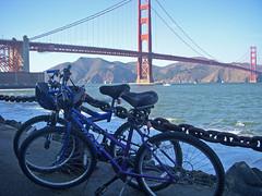 The Bikes II