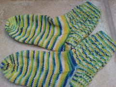 DD's Weeping Willow socks
