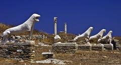 lleons a Delos (campru) Tags: greece grecia greekislands tp cyclades mykonos delos onblue cicladas islasgriegas anawesomeshot illesgregues