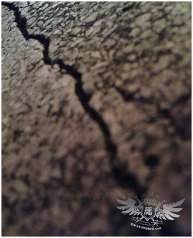 17122008_crack