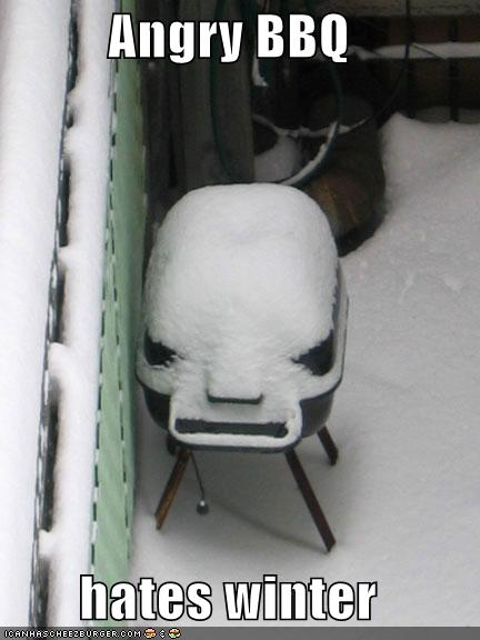 funny-pictures-angry-bbq-hates-winter-snow