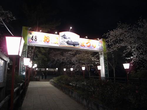 郡山城跡(夜桜)-01