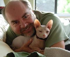 Sphynx Cat with His Happy Man (redheadjokes) Tags: pet cute sphinx cat eyes pretty body alien lavender adorable ears paws sphynx hairless wrinkles yelloweyes lavendar sphinxcat sphynxcat boosweetpea redheadjokes