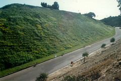 Erosion Control at Steamplant Road - Naval Subbase, San Diego, California