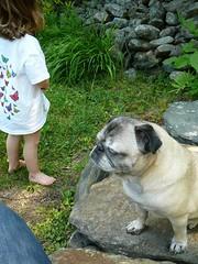 annie's just chillin (alist) Tags: alist dublinnh charlottelasky cassiecleverly alicerobison july2008 ajrobison