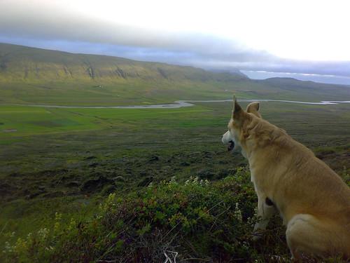 Gönguferð upp á Skálpastaðahnött