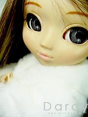 darcy (katyou) Tags: cute bigeyes pullip latte sb2 obitsu pulliplatte