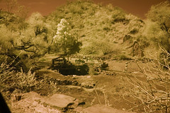 Rajasthan Countryside With Well And Goatherds In Distance (aeschylus18917) Tags: danielruyle aeschylus18917 danruyle druyle 赤外線 ir infrared landscape scenery surreal nikond70 sky tree nikon d70 ダニエルルール ダニエル ルール india rajasthan hilltribes d200 well water drawingwater goatherd goatherders shepherds spring nikkor1870f3545g nikkor1870f3545gdx 1870mm 1870f3545g nikkor 1870 f3545g pxi pxt