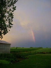 Rainbowssss (C. Redhead) Tags: storm tree rain rural rainbow farm thunderstorm