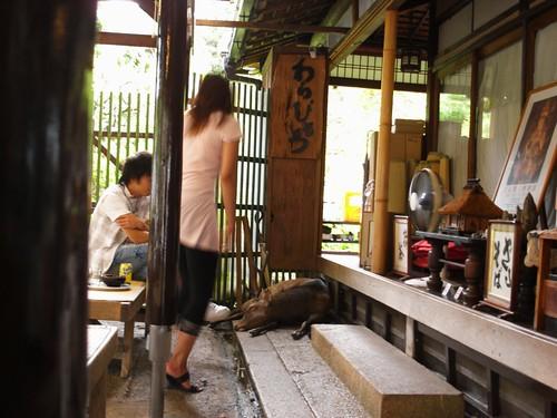 奈良公園の茶店-04