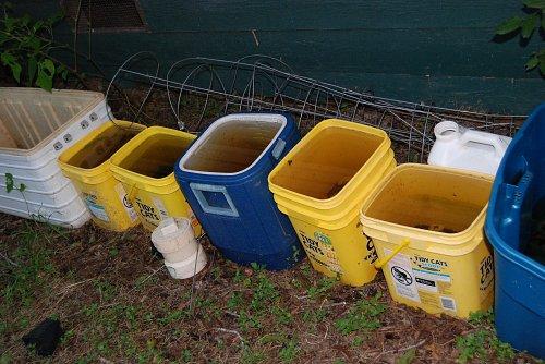 Full Buckets -- YES!