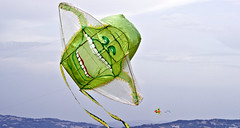 Ghost Buster (Piero Gentili) Tags: sky kite cute canon giant fly flying nice mare shot ghost best kites cielo canona1 gigante piero 20051 vola ghostbuster aquiloni volare aquilone pierpaolo gentili lancio lanciare sonyalpha350 piero20051 pierogentili gentilipiero gentiligentili pierpaologentili gentilipierpaolo