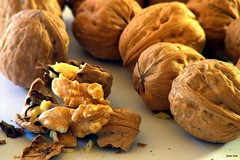 Nueces (s ) Tags: brown dof nuts shakespeare otoo nut deepoffield profundidaddecampo nuez frutossecos fruto nueces muchas marrn photostock pocoruido
