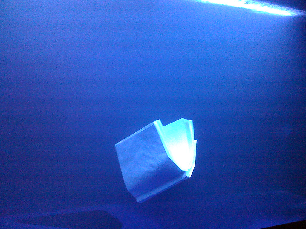 "Original caption: ""singapore biennale 2008. bachelor - the dual body. ki bong rhee, korea. a book floating in water, illuminated by blue light. the book will neither rise to the surface nor sink due to the currents of the water."""