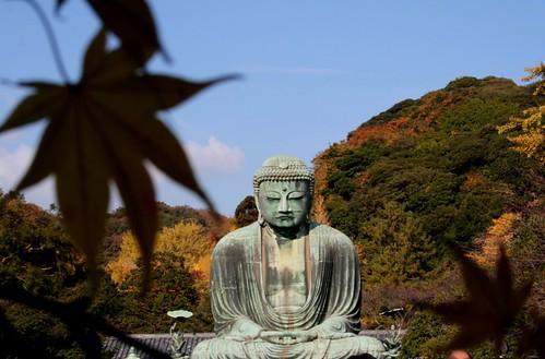 odaiba-kamakura (66)