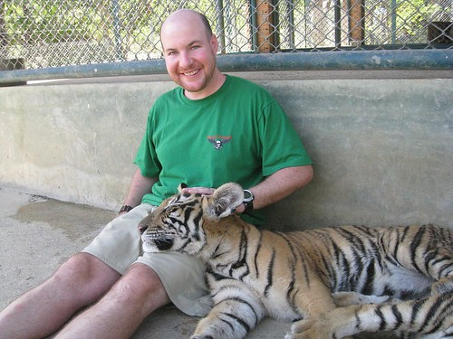 Petting one of the 5-month old (sleepy) tigers