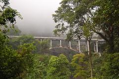 Nature around Besuk Sat River (Ikhlasul Amal) Tags: bridge mist nature river lava channel semeru besukkoboan besuksat