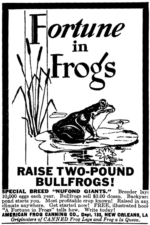 32-4 Frogs