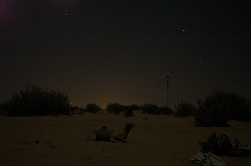 jaisalmer nights