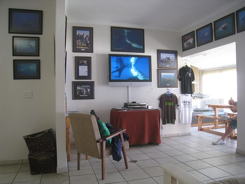Office of Shark Diving Unlimited