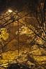 Definitely the end of autumn (2) in Almaty, Kazakhstan, 9 November 2008 (Ivan S. Abrams) Tags: autumn winter arizona snow cold weather nikon asia seasons ivan soviet storms abrams kazakhstan scenes nikondigital kazakh steppes almaty astana smörgåsbord tucsonarizona republics 12608 nazarbayev asiacentral onlythebestare ivansabrams trainplanepro nikond300 pimacountyarizona safyan arizonabar arizonaphotographers ivanabrams cochisecountyarizona gettyimagesandtheflickrcollection changeofseasonscentral transcaucasussoviet unionussrformer unionexsoviet ivansafyanabrams arizonalawyers statebarofarizona californialawyers copyrightivansafyanabrams2009allrightsreservedunauthorizeduseprohibitedbylawpropertyofivansafyanabrams unauthorizeduseconstitutestheft thisphotographwasmadebyivansafyanabramswhoretainsallrightstheretoc2009ivansafyanabrams abramsandmcdanielinternationallawandeconomicdiplomacy ivansabramsarizonaattorney ivansabramsbauniversityofpittsburghjduniversityofpittsburghllmuniversityofarizonainternationallawyer