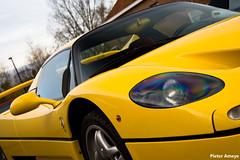 Ferrari F50 (Pieter Ameye) Tags: auto cars macintosh photography belgium head automotive ferrari voiture coche 1995 petrol macchina pieter maranello targa lightroom speedline v12 f50 petrolhead 47l ameye canoneos400d naturallyaspirated pietera pieterameye giallomodena 60valve