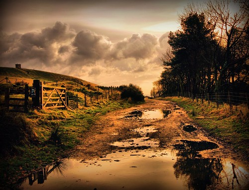 The Dovecot road. by Wizard Snaps