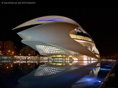 The Valencia's Opera House wearing its best clothes (second and last version) (Salva del Saz) Tags: city santiago espaa house valencia architecture modern night digital canon reflections eos noche reina spain arquitectura opera long exposure angle sofia wide arts ciudad calatrava gran cac angular artes ultra 1022mm dri sciences moderna exposicion reflejos larga palacio blending ciencias dynamicrangeincrease efs1022 21022 40d salvadordelsaz salvadelsaz
