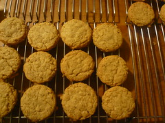 Salty Oatmeal Cookies