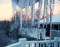 Icicles (tgaudmx5) Tags: trees winter sunset red sky orange snow storm cold forest vermont gray stormy icicles