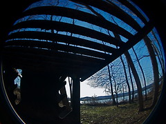 DSC_1168 (vivi EDGE;) Tags: park woods fisheye bowdoin