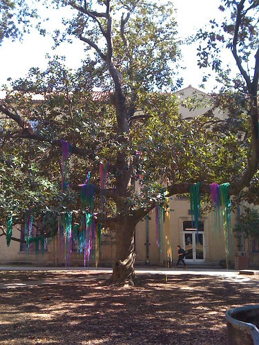 Beads in Trees!