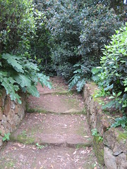 """Garden stairs • <a style=""""font-size:0.8em;"""" href=""""https://www.flickr.com/photos/36178200@N05/3390708493/"""" target=""""_blank"""">View on Flickr</a>"""
