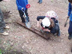 57 children from St Bartholomew's year 5 visited the trackbed to undertake historical and ecological study