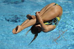 Melanie Rinaldi (gongolo) Tags: roma tuffo tuffi 13thfinaworldchampionships melanierinaldi mondialidinuotofinaroma09 womens1mspringgboard finalefemminiletrampolino1metro