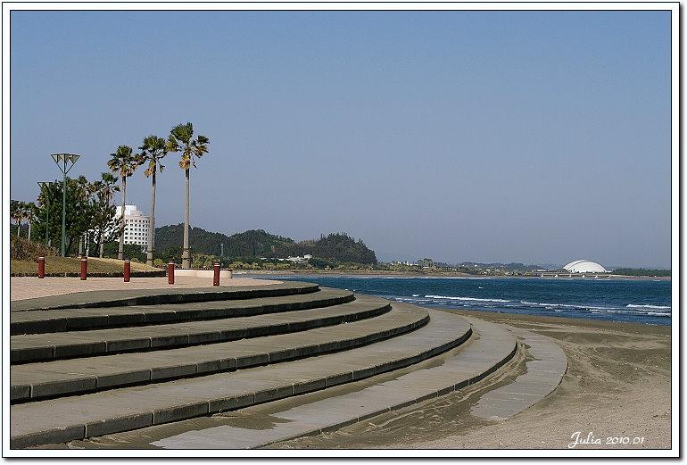 青島海岸 (9)