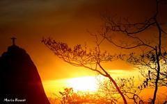 Dourado Cristo Redentor (mariohowat) Tags: sun riodejaneiro sunrise natureza cristoredentor nascerdosol mygearandme mygearandmepremium mygearandmebronze mygearandmesilver mirantesdoriodejaneiro