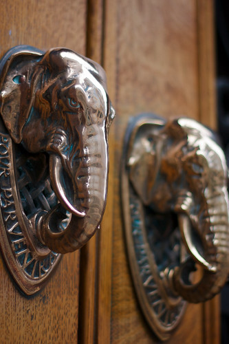 Elephantine knockers: Cutlers Hall