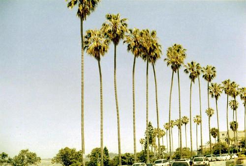04 La Jolla