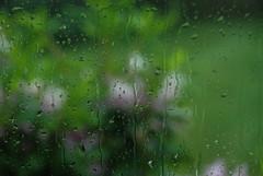 Thunderstorm through the window