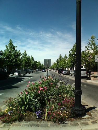 Mountain Viewからの景色。