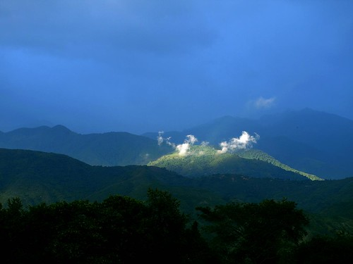 Green Montain